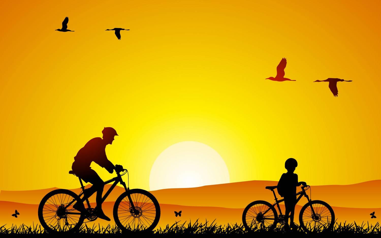 Велосипедный спорт универсальное