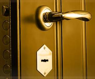 http://www.neogreen.ru/metallicheskie-dveri/lex-dveri/
