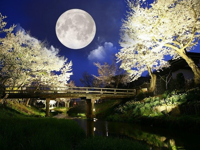 Лунный календарь на декабрь лунный